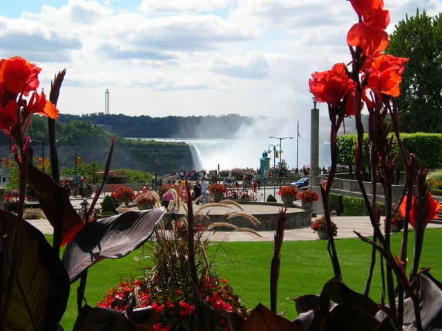 The American Falls beyond the flowers and stage